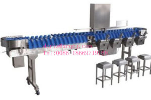 Food Processing Industry Weight Sorter pictures & photos