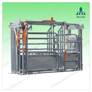 Cattle Chutes with Scale for Weighing pictures & photos