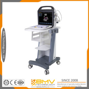Excellent 2D Image Quality Color Doppler Ultrasound Bcu30 pictures & photos