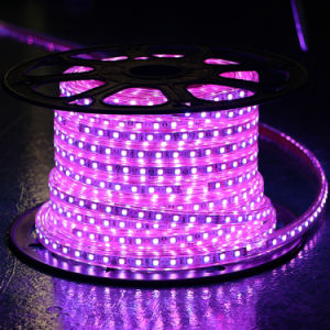 Green Color 60LEDs SMD5050 220V IP65 LED Rope Light pictures & photos