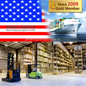 Professional Reliable Shipping Agent to USA From China pictures & photos