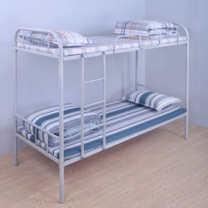 China Dormitory Furniture Double Bunk Beds For Adults China Bunk