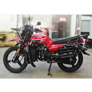 High Quality Gas Motorbike Fast Speed Motorcycle Cycling Steel Frame Motor