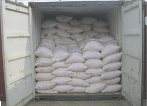 Fish Feed with Competitive Price