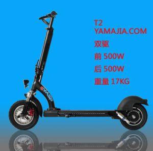 China Ewasp High Quality Two Bruless Motors 36V, 13ah, 1000W