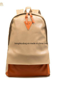 2014 New Product Man Leisure Fashion Backpack for Travel (LDY-20140702)