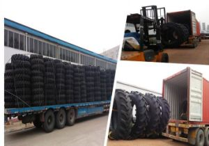 DOT Gso Certificated Agriculture Tyre6.00-16, 6.50-16 to Asia America Oceania Manrket