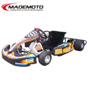 Racing Go Kart pictures & photos
