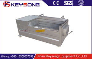 Stainless Steel High Quality Fruit Vegetable Brush Washing Peeling Machine for Sale pictures & photos