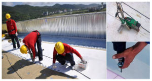 Thermoplastic Polyolefine/Tpo Waterproof Membrane for Singlelayer Roof System