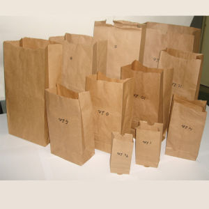 Square Button Paper Bags pictures & photos