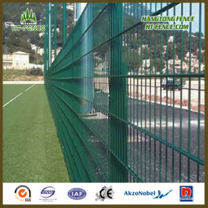 Clear View and High Strong 2D Double Wire Fence Panel pictures & photos