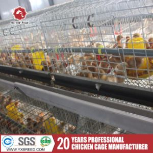 Battery Layer Chicken Cage Sale for Poultry Farm pictures & photos