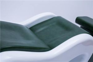 Salon Furniture Beauty Equipment Hairdressing Salon Wash Basins pictures & photos