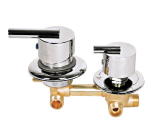 Show Room Faucet (AB-3003)
