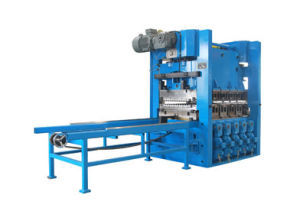 Stainless 23 Roll Tension Leveling Machine