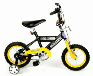Children Bicycle (ZS-CB810)