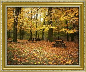 Modern Wall Art Home Decoration HD Printed Oil Painting on Canvas Beautiful Autumn Scenery Canvas Prints for Living Room