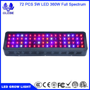 Glebe 100W/200W/300W/600W Double Chips LED Grow Light Full Specturm Grow Lamp for Greenhouse Hydroponic Indoor Plants Veg and Flower pictures & photos