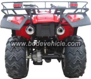 New 250cc Road Legal Quad Bike with Gasoline pictures & photos