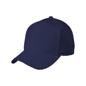 Promotional Heavy Brush Cotton Baseball Cap with Logo Embroidery pictures & photos