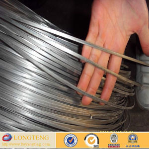 Anping Made Q195 Galvanized Box Stitching Flat Wire (AP-LT-5283)