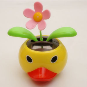 Cartoon Solar Apple Flower (SX-A007)