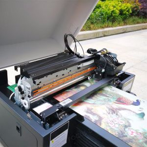 Multi-Function Usage Ball Pen Logo Printing Machine UV Flatbed Printer pictures & photos