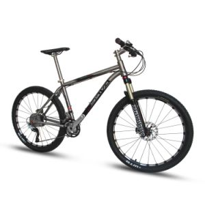 26′′ Titanium Alloy Mountain Bike (Black Mamba)
