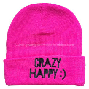 Fashion Knitted Winter Beanie Hat/Cap with Metal Embroidery