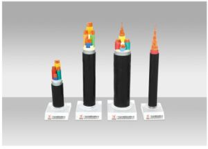Power Cable, Copper/Aluminium Conductor XLPE/PVC Insulated PVC/PE Sheathed Electric Cable with Armored or Screened.