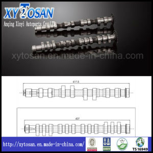 B5 481Q Engine Camshaft for Volkswagen (VW) (OEML058109021D/L058109022D) pictures & photos