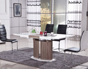 Stainless Steel PU Leather Dining Room Table Chair (ET42 & EC15)