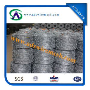 Galvanized Barbed Wire with Bwg14 Wire pictures & photos
