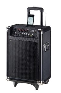Portable Speaker\Professional Speaker System with Handles and Trolley Wheels (VEX8RC POD)