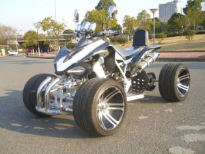 250CC Racing ATV Quad EEC