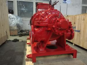 Multistage Double Suction Centrifugal Pump pictures & photos