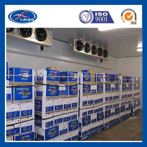 Fruit and Vegetable Cold Storage Cool Room (laiao) pictures & photos