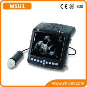 Veterinary Digital Ultrasound Scanner (MSU1) pictures & photos