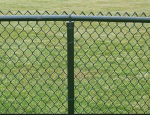 Wire Mesh Fence with PVC Coated