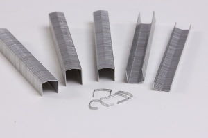 Industrial Wire Staple (STCR5019 Series Staple) pictures & photos