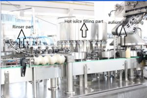Automatic Pet Bottle Milk Filling Machine pictures & photos