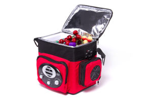 Portable Electronic Mini Fridge 6 Liter, DC12V with Radio for Outing Activity Use pictures & photos
