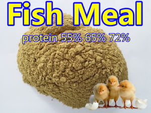 Fish Meal for Fish Feed Protein 65% 72%