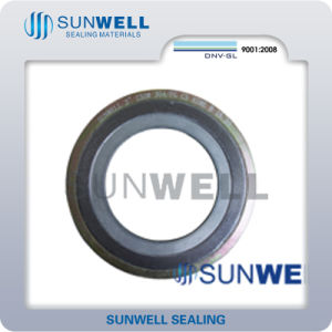 Graphite Spiral Wound Gasket with Outer Ring and Inner Ring PTFE Seat Ring pictures & photos