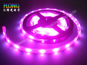 Multicolor Flexibility LED Strip Light 14.4W SMD5050 pictures & photos