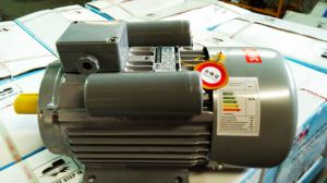 YL Single-Phase Dual-Capacitor Induction Motor (CE) pictures & photos