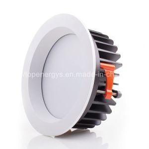 40W 8inch Citizen COB LED Osram LED Driver LED Downlight pictures & photos