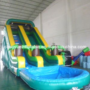 Commercial Grade Tropical Water Slide with Pool (CYSL-559) pictures & photos