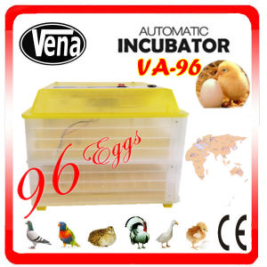 Competitive Price! CE Approved Professional & Full Automatic Used Chicken Egg Incubator for Sale Va-96 Holding 96 Chicken Eggs pictures & photos